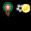 Maroc-Afrique du Sud (Vidéo but)